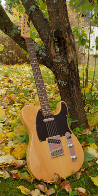ESP 400 Series Telecaster (1992), Japan